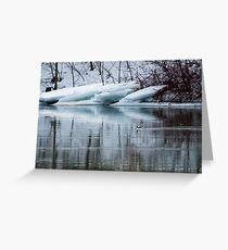 Bufflehead Duck and Ice Formation, Niagara River, Ontario Greeting Card