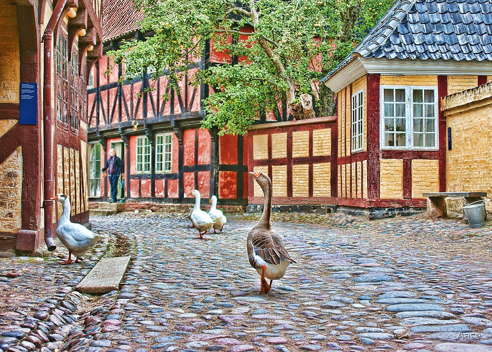 The Old Town by Aase
