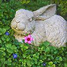 Garden Bunny by Heather Friedman
