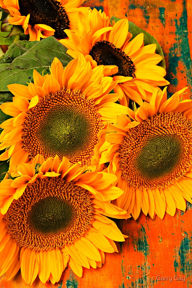 A Bunch Of Sunflowers by Garry Gay