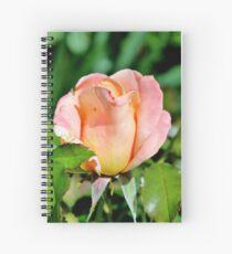 Eine Vorliebe für Rosen Spiralblock