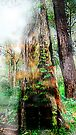 The Door Of the Enchanted Tree (fairy land)  by mandyemblow