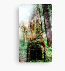 The Door Of the Enchanted Tree (fairy land)  Canvas Print
