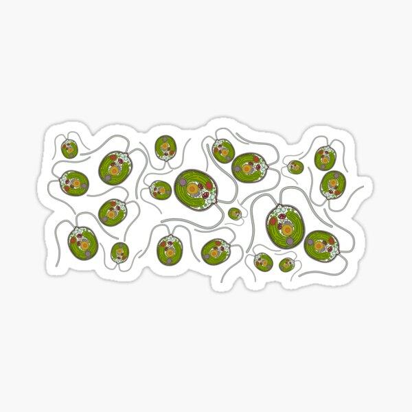 Chlamydomonas Print Sticker
