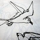 Sketch Book - Birds by Hekla Hekla