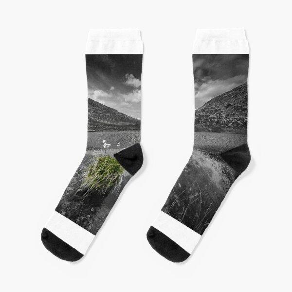 Bog Cotton on Blue Lough Socks