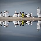 Reflection by wellman