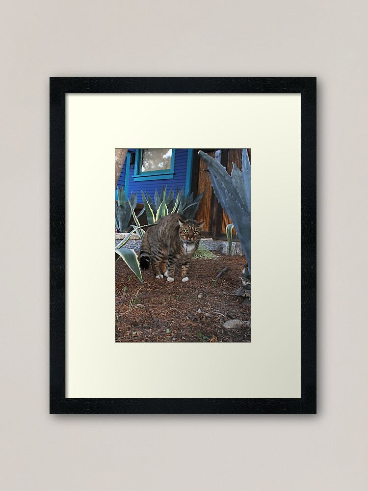 Alternate view of Don't mess with me, Dog! Framed Art Print