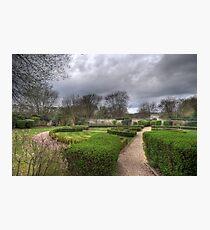The Silent Garden - Oxford Thames Four Pillar Hotel Grounds Photographic Print