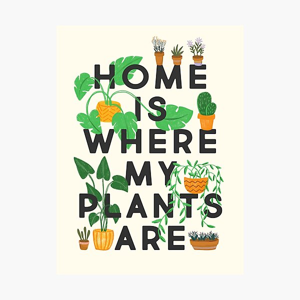 Home Is Where My Plants Are Photographic Print