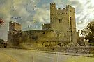 Cahir Castle, Co . Tipperary. by Martina Fagan