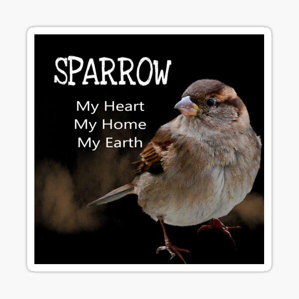 Sparrow Symbolism Sticker
