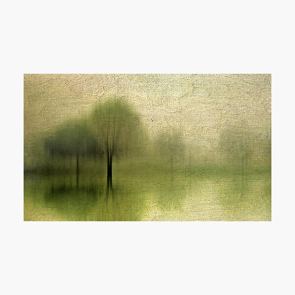Impressions of Spring Photographic Print