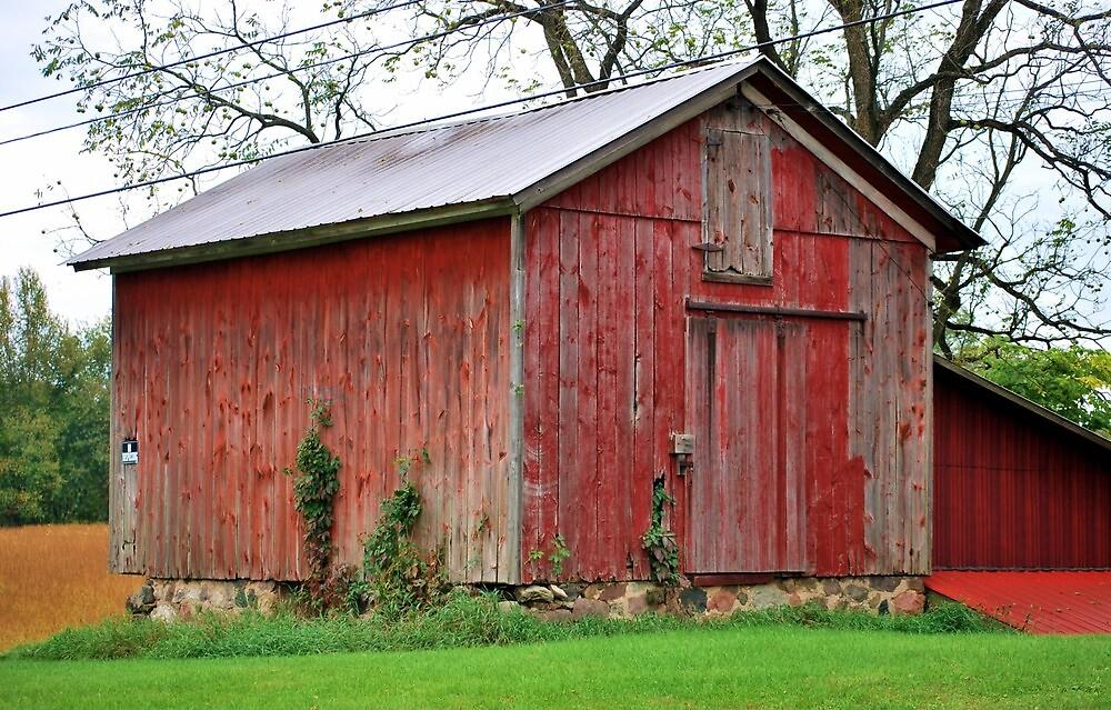 The Barn by Michelle BarlondSmith