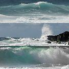 Bolders Beach - NSW by Louise Linossi Telfer