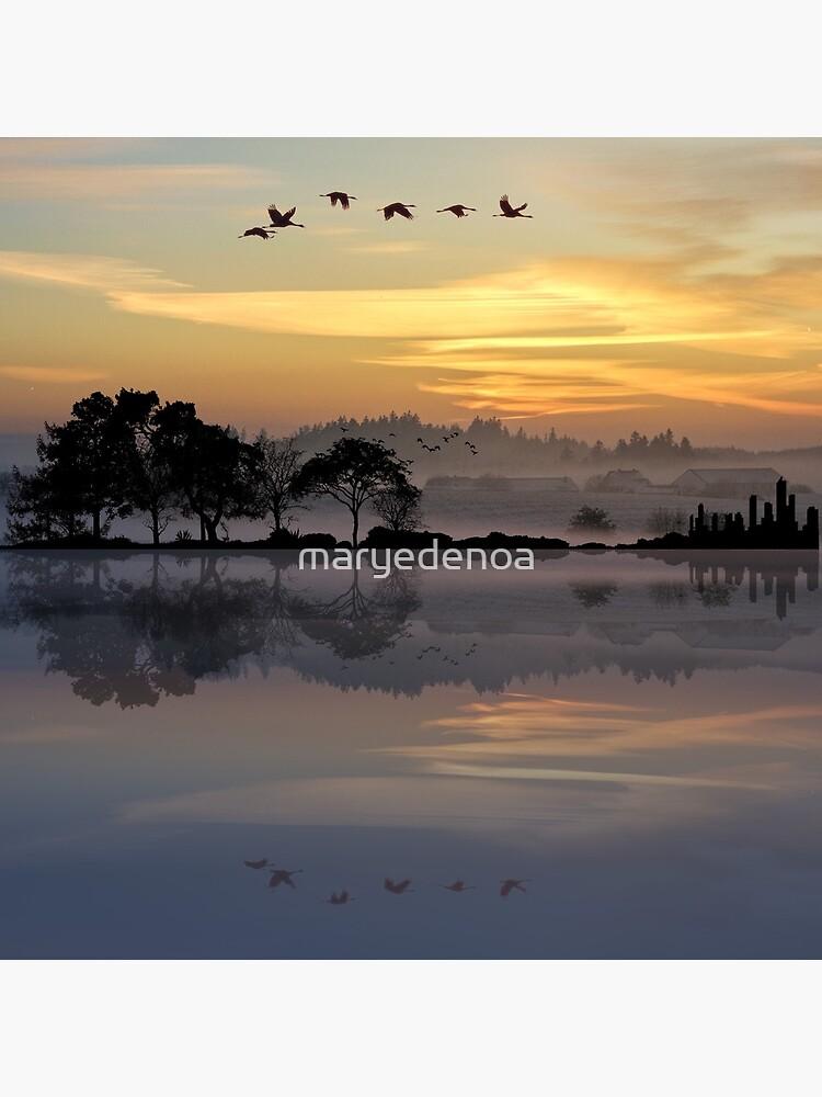 Nature Guitar Sunset by maryedenoa