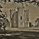 Blaise Castle tower. by Susie Hawkins