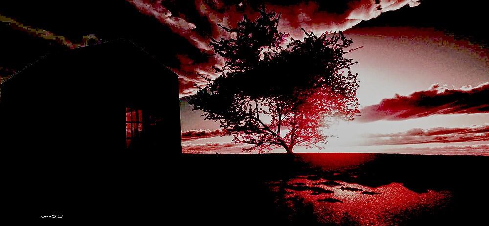Boxbergheide Sunset 1954. by alaskaman53