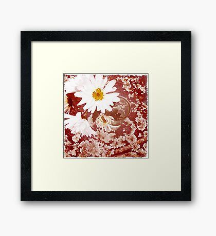 Daisy and Lichen Hand In Hand Framed Print
