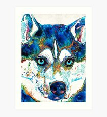 Colorful Husky Dog Art by Sharon Cummings Art Print