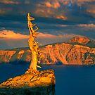 Crater Lake Sage by Dragomir Vukovic