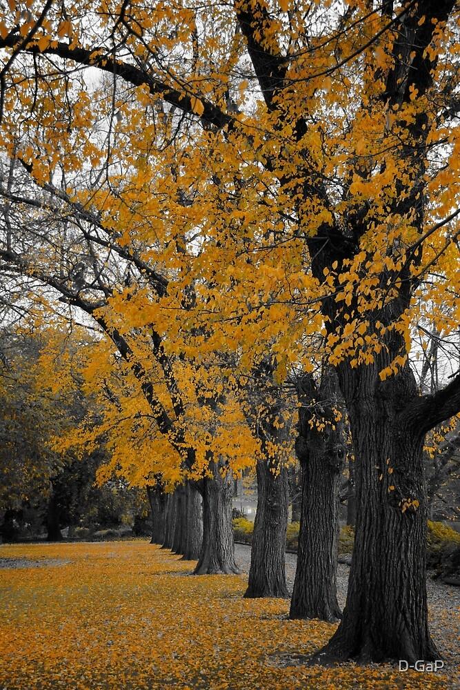 Autumn's Golden Gown  by D-GaP