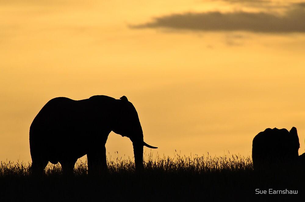 Mara Elephant at Sunset by Sue Earnshaw