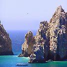 Cabo San Lucas by Christine Frydenborg Dargon