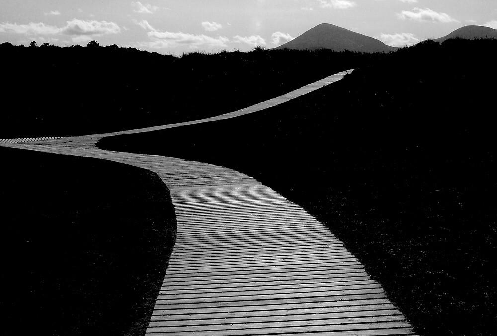 Murlough the Mourne Mountain Path by ragman