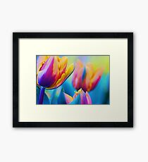 Colour My World.... Framed Print
