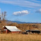 Red Barn on Valmont by Pamela Hubbard
