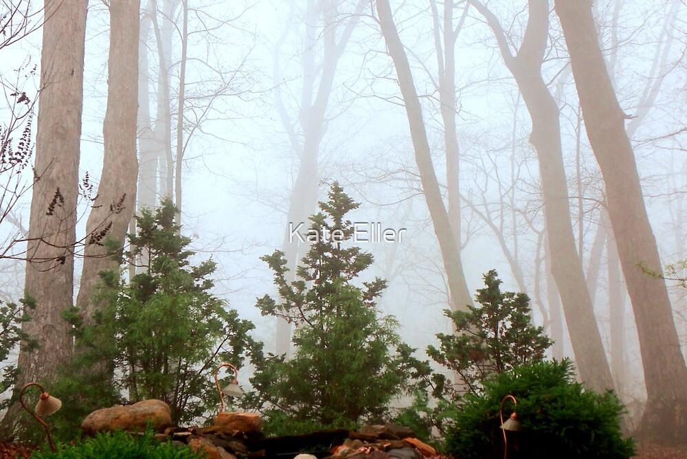 Morning Mist by Kate Eller
