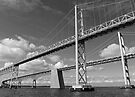 Bridges 2 by Leon Heyns