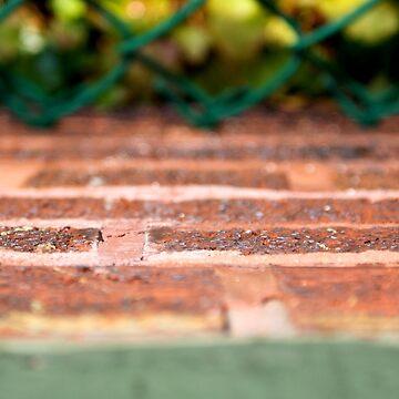 Bricks and Ivy - Wrigley Field by boukou9