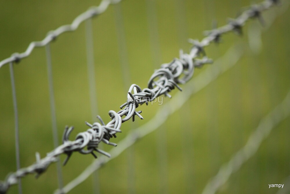 A fence must join sum where sum time  by yampy