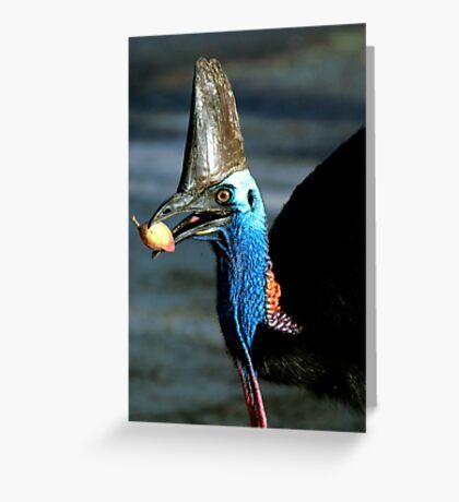 Take a bite - Etty Bay Cassowary Greeting Card