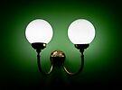 Bright Eyes in a Green World by Rhoufi