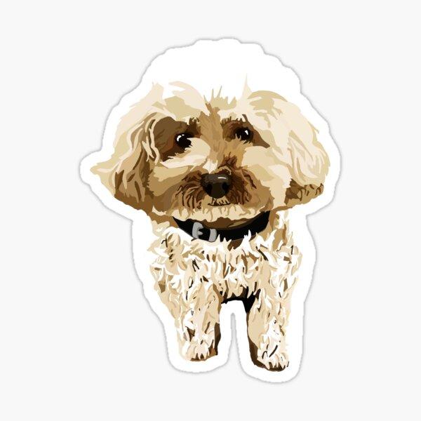 Beigy the little dog Sticker