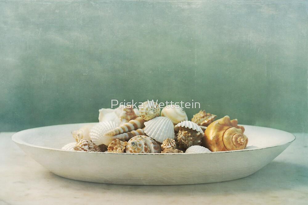 Muschelschale by Priska Wettstein
