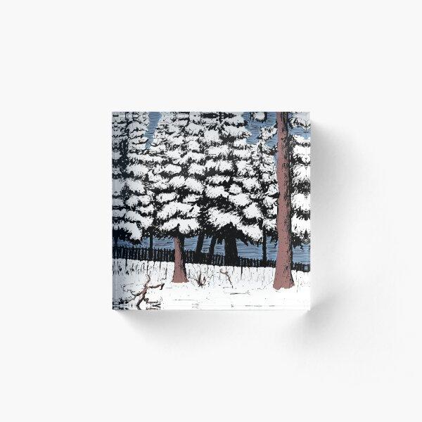 Backyard Snowfall Acrylic Block