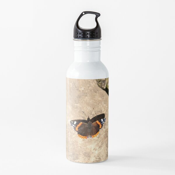Almirante rojo mariposa, tomando el sol en una roca Botella de agua