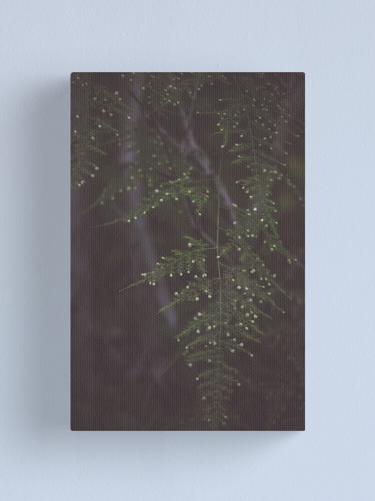 Alternate view of Fern Canvas Print