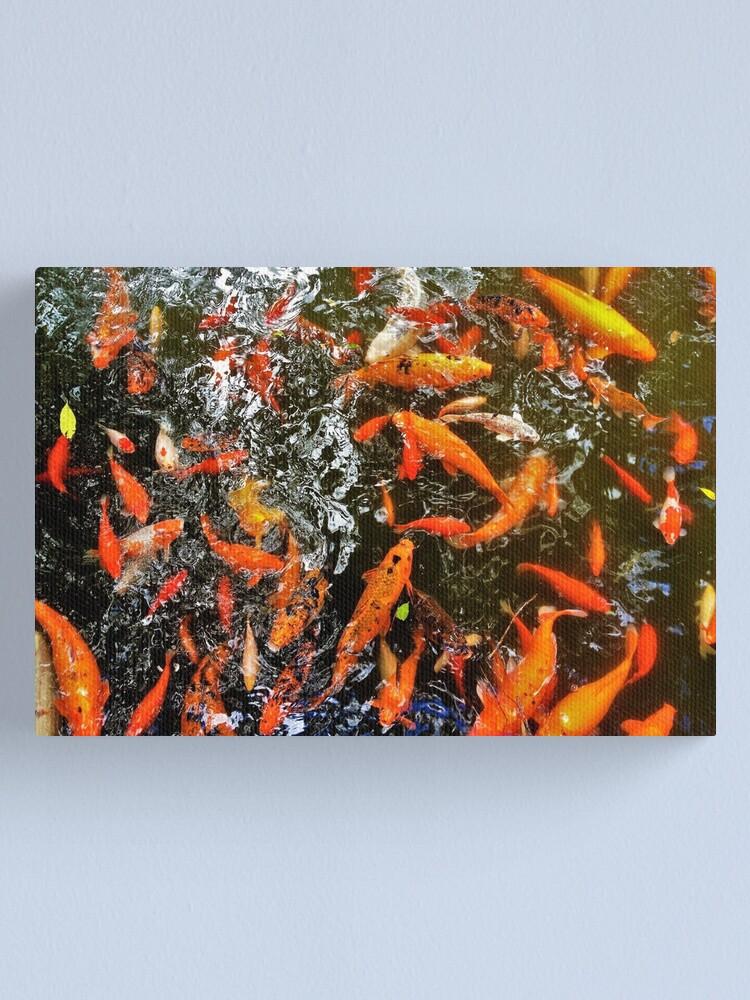 Alternate view of Koi Canvas Print