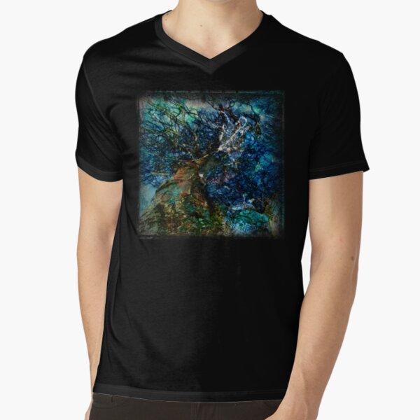 The Atlas Of Dreams - Color Plate 62 V-Neck T-Shirt