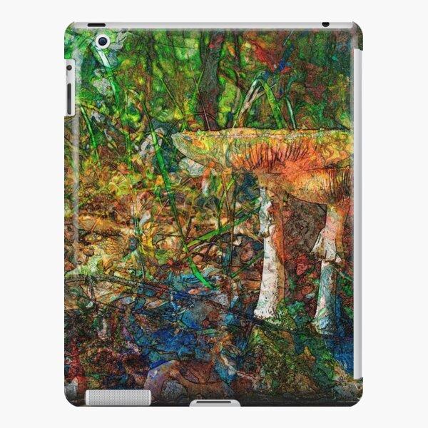 The Atlas Of Dreams - Color Plate 60 iPad Snap Case