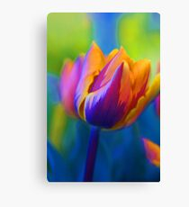 The Colours Of Spring.... Canvas Print