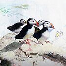 Puffins by Leyh