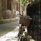 Cambridge Bicycle by Robert Ellis