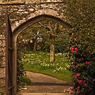 Welcome to Cotehele Gardens by moor2sea
