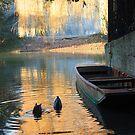 Ducks and Punts by Robert Ellis